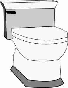 choose-best toilet